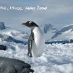 Tikra egzotika – iš Kauno į Ušuają, Ugnies žemę ir Antarktidą, vos 508 EUR!