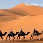"""Gruodžio viduryje """"Wizz Air"""" tiesioginiai skrydžiai iš Vilniaus į Agadirą, Marokas – tik 55 EUR į abi puses!"""