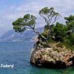 Neblogai! Pigūs bilietai birželio mėnesį į Zadarą, Kroatija, iš Kauno – tik 78 EUR į abi puses!