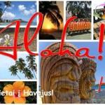 Jūsų gyvenimo šansas apsilankyti Havajuose – pigūs bilietai iš Italijos vos už 346 EUR!