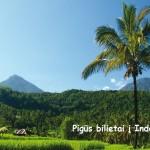 """Pigūs bilietai su """"Turkish Airlines"""" iš Rygos į Džakartą, Indonezija – tik nuo 413 EUR už kelionę į abi puses!"""