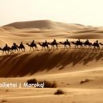 WoW! Pigūs bilietai iš Kauno į Marakešą, Marokas – vos nuo 61 EUR į abi puses!