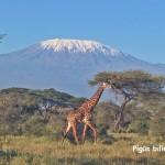 Super! Pigūs bilietai iš Šveicarijos į Nairobį, Kenija – vos nuo 181 EUR už kelionę į abi puses!