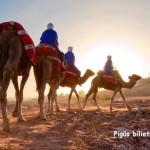 Pigūs bilietai iš Vilniaus į Marakešą, Marokas – vos nuo 94 EUR į abi puses!