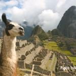 Super hitas! Tiesioginiai skrydžiai iš Madrido į Limą, Peru – vos 237 EUR į abi puses! Galimas išvykimas ir per Kalėdas bei Naujuosius Metus!