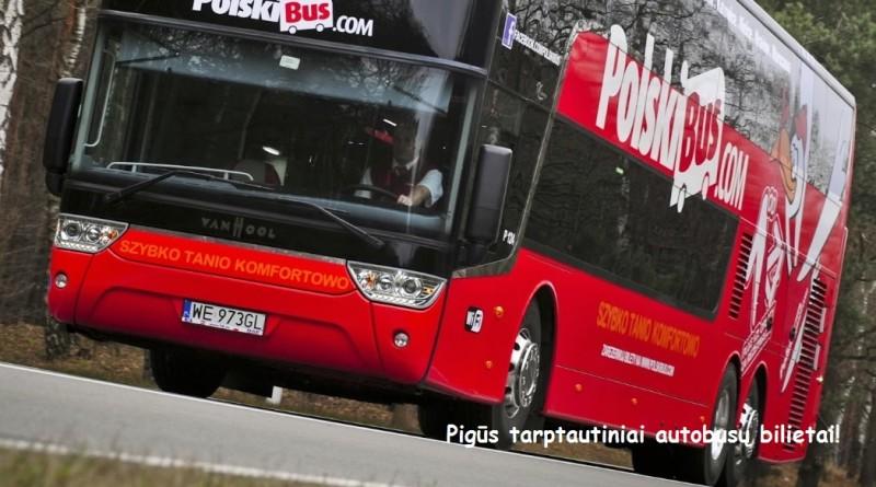 Polski_Buss