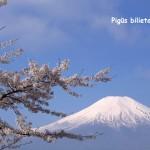 Pigūs bilietai į Tokiją, Japonija, iš Vilniaus – tik 439 EUR į abi puses!