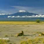 WOW! Neįtikėtinai pigūs bilietai į Nairobį, Kenija – vos nuo 237 EUR už kelionę į abi puses!