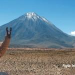 Hitas! Pigūs bilietai iš Romos į Santjagą, Čilė – tik nuo 321 EUR į abi puses!
