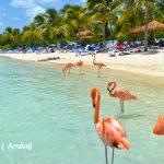 Super! Pigūs bilietai iš Londono į Arubą, Karibai – tik 327 EUR už tiesioginius skrydžius į abi puses!