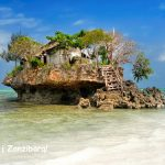 Super! Tiesioginiai skrydžiai iš Briuselio į Zanzibaro salą vos nuo 298 EUR už kelionę į abi puses!