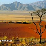 Neblogai! Pigūs bilietai iš Vokietijos į Vindhuką, Namibija – tik nuo 369 EUR į abi puses!
